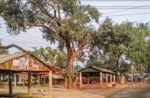 Santahar new bazar